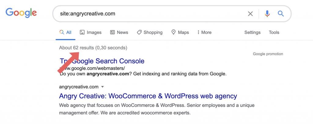 Site search on Google